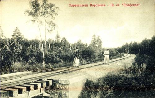 Открытка. Окрестности Воронежа - На ст. Графская