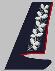 Шитье на воротнике пиджака Президента ОАО «РЖД» образца 2010 года