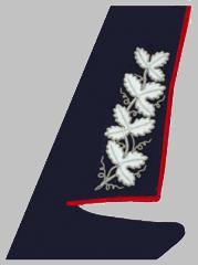 Шитье на воротниках пиджаков Вице-президентов ОАО «РЖД» образца 2010 года