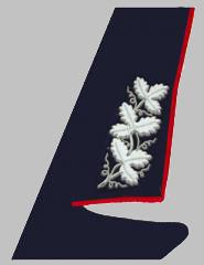 Шитье на воротниках пиджаков высшего начальствующего состава ОАО «РЖД» образца 2010 года