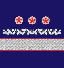Нарукавные знаки различия Первого вице-президента ОАО «РЖД» образца 2010 года