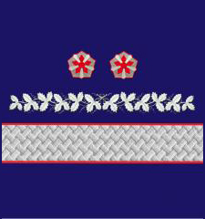 Нарукавные знаки различия Старшего вице-президента ОАО «РЖД» образца 2010 года