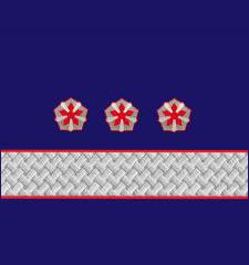 Нарукавные знаки различия 1-й должностной категории высшего состава ОАО «РЖД» образца 2010 года