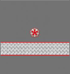 Нарукавные знаки различия 3-й должностной категории высшего состава ОАО «РЖД» образца 2010 года