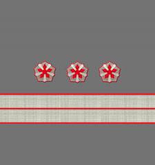 Нарукавные знаки различия 5-й должностной категории старшего состава ОАО «РЖД» образца 2010 года
