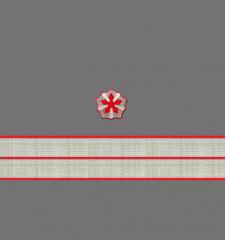 Нарукавные знаки различия 7-й должностной категории старшего состава ОАО «РЖД» образца 2010 года