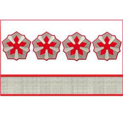 Нарукавные знаки различия 8-й должностной категории среднего состава ОАО «РЖД» образца 2010 года