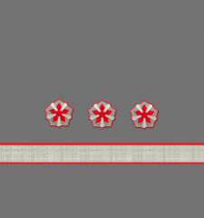 Нарукавные знаки различия 9-й должностной категории среднего состава ОАО «РЖД» образца 2010 года