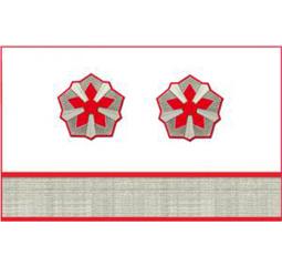 Нарукавные знаки различия 10-й должностной категории среднего состава ОАО «РЖД» образца 2010 года