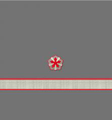 Нарукавные знаки различия 11-й должностной категории среднего состава ОАО «РЖД» образца 2010 года