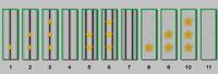 Галунные петлицы на воротник сюртука ведомства Министерства путей сообщения (1869-1876 годов)