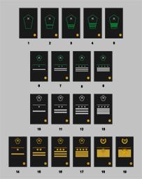 Нарукавные знаки различия МПС образца 1963 года